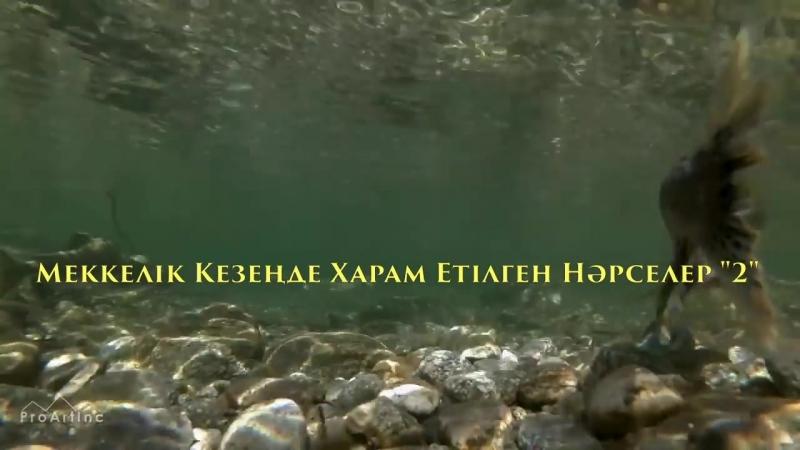 Меккелік кезеңде харам етілген нәрселер 2 бөлім Ерлан Ақатаев ᴴᴰ