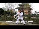 Wu Dang Gong Fu 5【explain】 Wu Dang Sword 武当剑法 Xu Wei Han 许微含