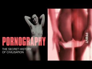 Порнография: Тайная история цивилизации 5. Секс, ложь и видео