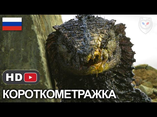 Ракка / Rakka - Короткометражка, Русская озвучка Alexfilm (2017) Нил Бломкамп