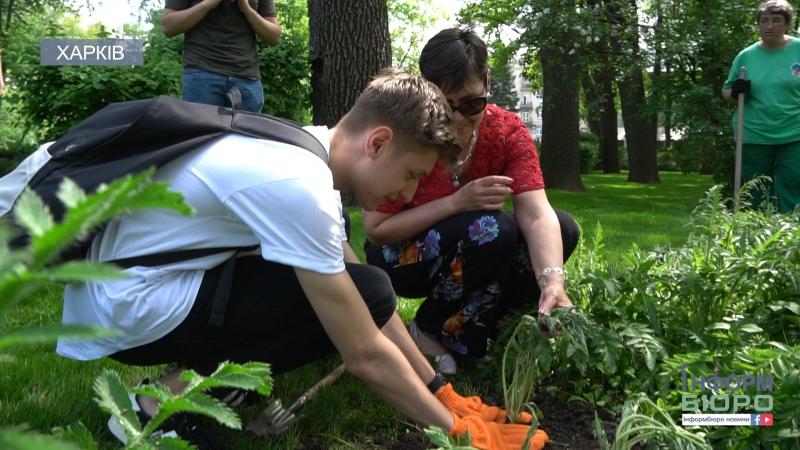 До Дня памяті та примирення у парку ім. М. Горького посіяли червоні маки