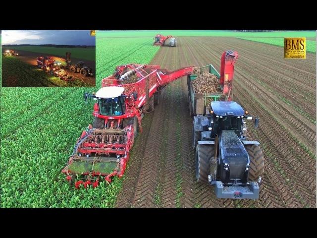 Rübenernte Grimme Rexor 630 Holmer T3 Claas Xerion 4500 Fendt 927 BB vom LU Meyer Bösel