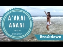Tehani Benjamin - Otea - A'akai Anani - Drum Beats of The Pacific - breakdown