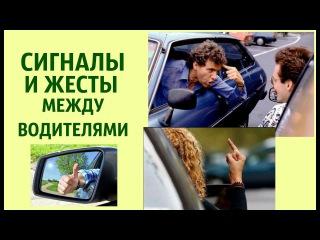 Язык сигналов и жестов на дороге