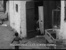 VIII Plenum. Dodatek nadzwyczajny PKF (1956) prod. WFD