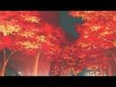 Romantic Autumn CityPop シティポップ JPOP 80s