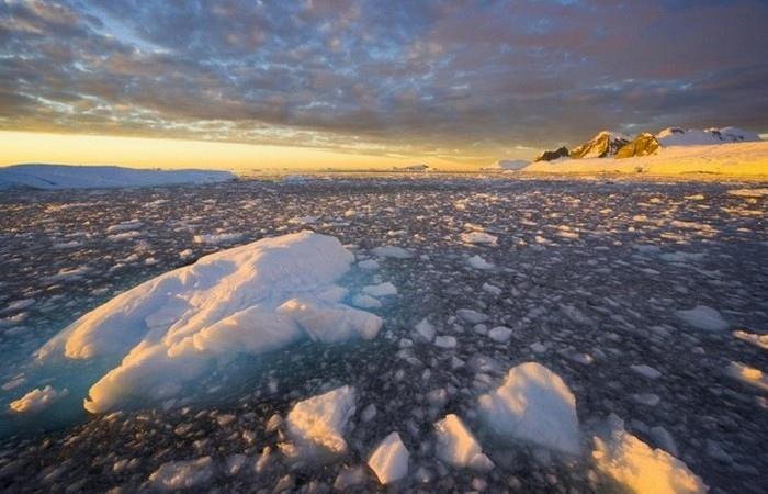 Невероятные факты об Антарктиде, которые знают немногие, изображение №13