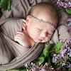 Маленькая жизнь.Курсы для беременных.Н.Новгород
