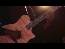 Animals As Leaders - The Brain Dance (Dunlop Sessions)