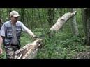 Топор Gardena 900 Лесной тест и заточка