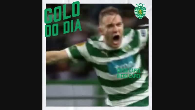 Sporting Clube de Portugal - GoloDoDiaSCP Capel
