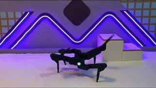 аэробика от робота-паука - танцующий робот паук (спорт и танцы)