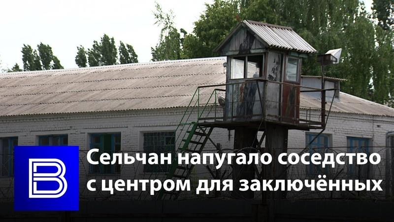 Боимся здесь жить воронежских сельчан напугало соседство с центром для заключённых