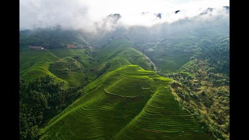 EPIC rice terraces drone flight (China Longsheng Longi dragons backbone)
