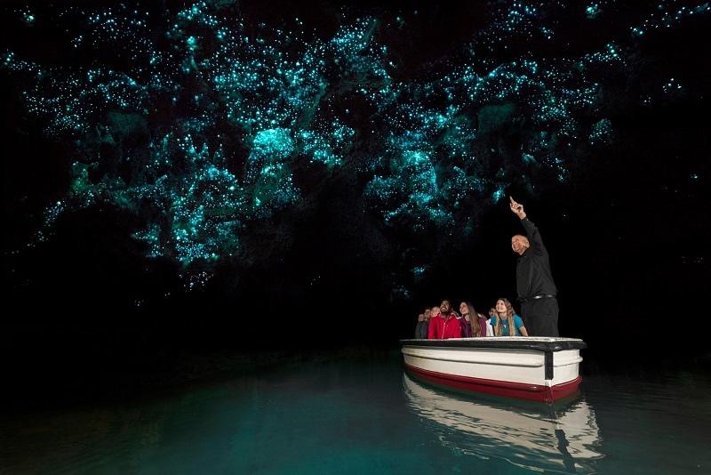 Вайтомо - Новозеландские пещеры светлячков, изображение №4