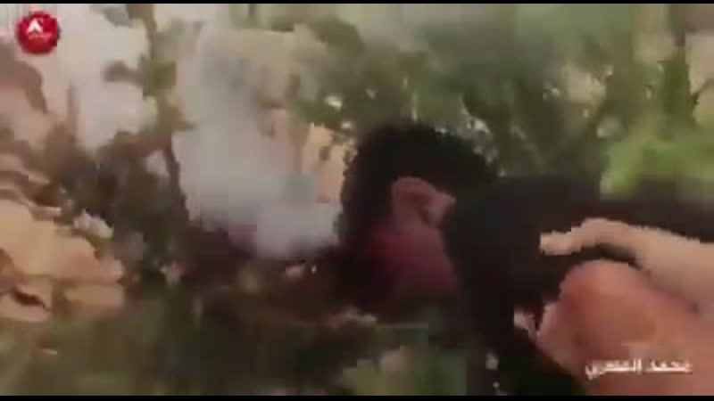 Le Martyr de Ahmad Samir Habel