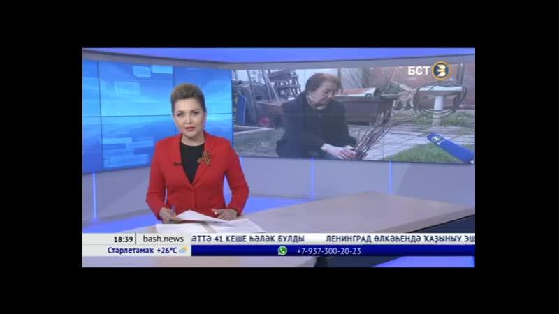 Өфөлә йәшәүсе Зөһрә Латипова Белоруссияға Бөйөк Ватан һуғышында һәләк булған 57 һалдат иҫтәлегенә шунса төп алмағас ултыртырға ю
