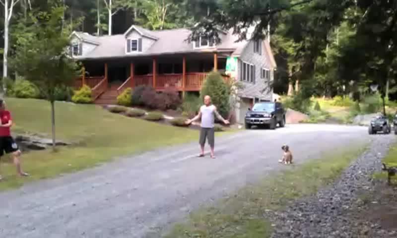 Тест электро-ошейника от невидимого забора для собак