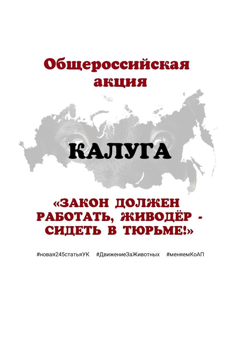 Афиша КАЛУГА. Закон должен работать-живодер сидеть