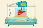 Новая технология позволяет печатать органы буквально за секунды
