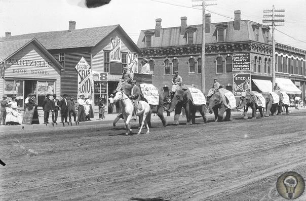 АМЕРИКАНСКАЯ ЦЕЛИНА. Ч.-3 1. Небраска, 1888 год 2. Типичная семья 3. 1892 год. Обратите внимание на эту огромную и сильную лошадь 4. Дом преподобного Тритса, 1903 год 5. Цирковое шествие 6.