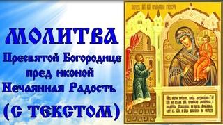 Молитва  Пресвятой Богородице пред иконой Нечаянная Радость (Память 22 декабря)
