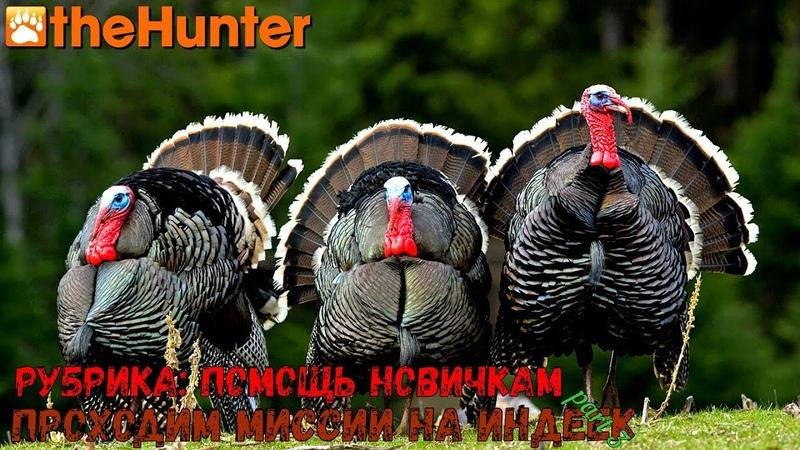 TheHunter Classic Рубрика: помощь новичкам миссии на индюка ч. 3 turkey missions