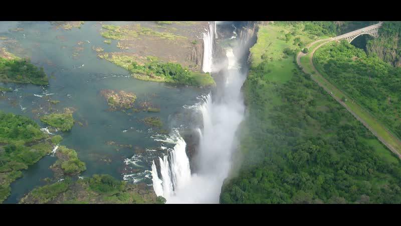 В дебрях Африки 2010