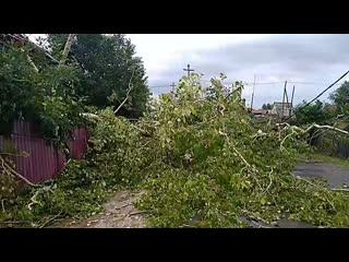 Прямой эфир: последствия сильного ветра в Лесосибирске