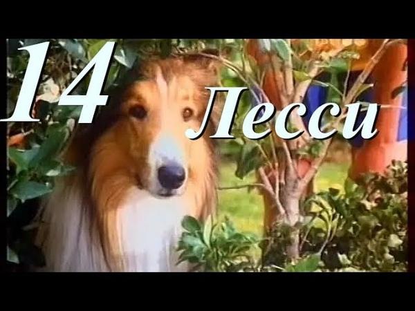 Лесси 14 серия 1 сезон