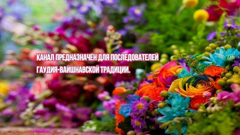 Нимай Сундара дас - ШБ 3.13.25 - 2020.04.03