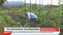 Россияне смогут узаконить земельные участки, которые используют больше 15 лет