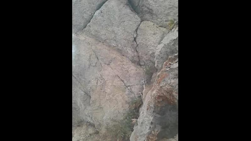 Спуск с горы Ай Петри по канатной дороге 2019г