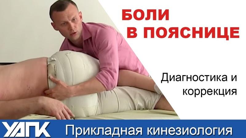 Поясничный отдел. Мануальная терапия дисфункций   Михаил Савиных
