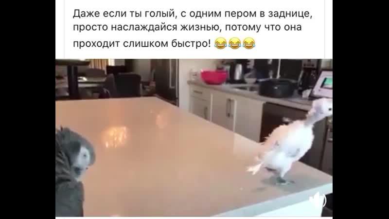 VIDEO 2019 10 03 13 50