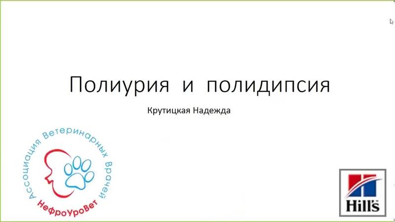 Вебинар №5 школы НЕФРОУРОВЕТ Полиурия и полидипсия Лектор Надежда Крутицкая