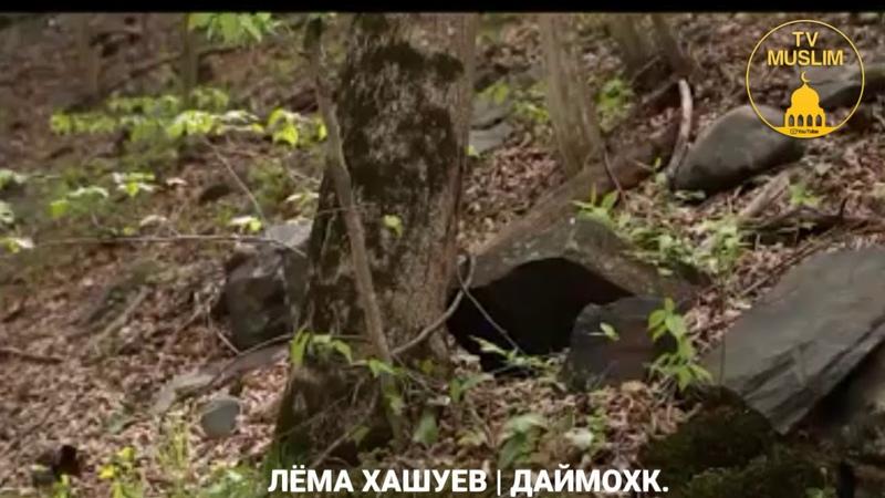 Лёма Хашуев Даймохк