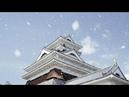 4K Ultra HD 桜吹雪 Sakura Fubuki Cherry Blossoms Blizzard Shot on RED