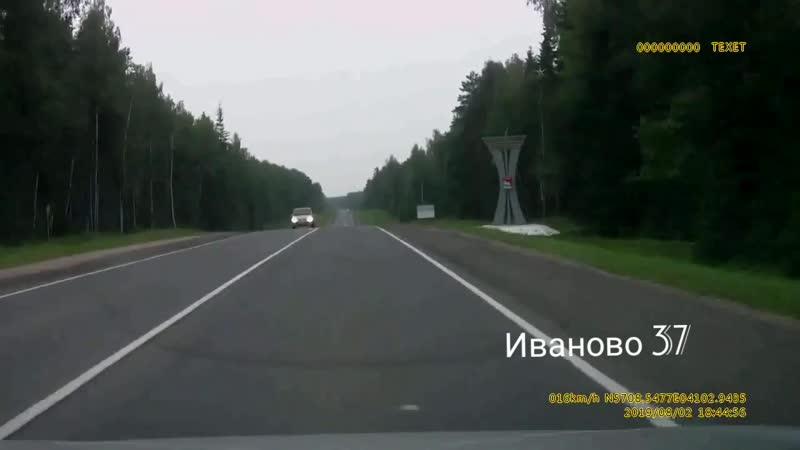 Медвежонок у с Бибирево, рубеж Ивановского и Фурмановского районов.