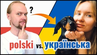 Polish Ukrainian Mutually Intelligible? | Animals | Slavic Languages Comparison