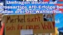 Umfragen deuten auf grossartige AfD-Erfolge bei allen drei Ost-Wahlen hin 👌🏻💙