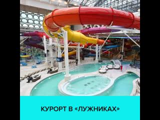 Почему стоит пойти во Дворец водных видов спорта в Лужниках  Москва 24