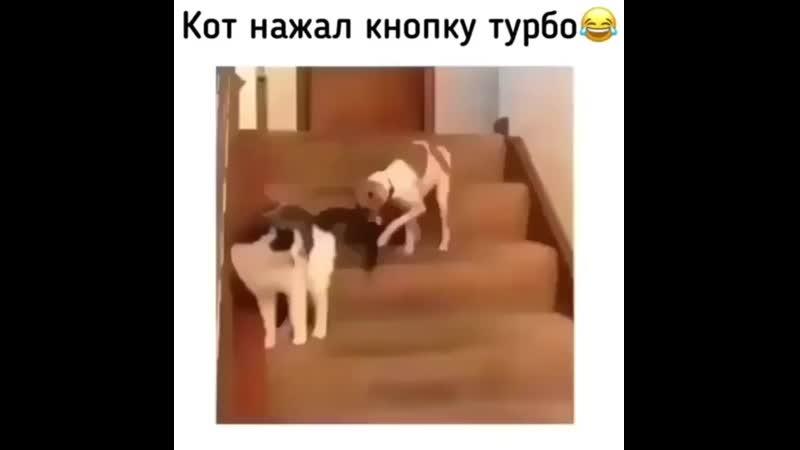 Xromosoma_j_20200321_142540_0.mp4