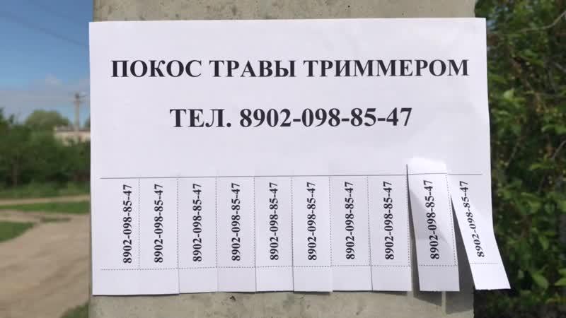 Trim.E2BFEFE2-6DFF-437A-A92E-776FD7FE0301
