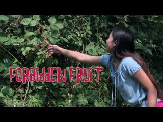 Elle Voneva - Forbidden Fruit