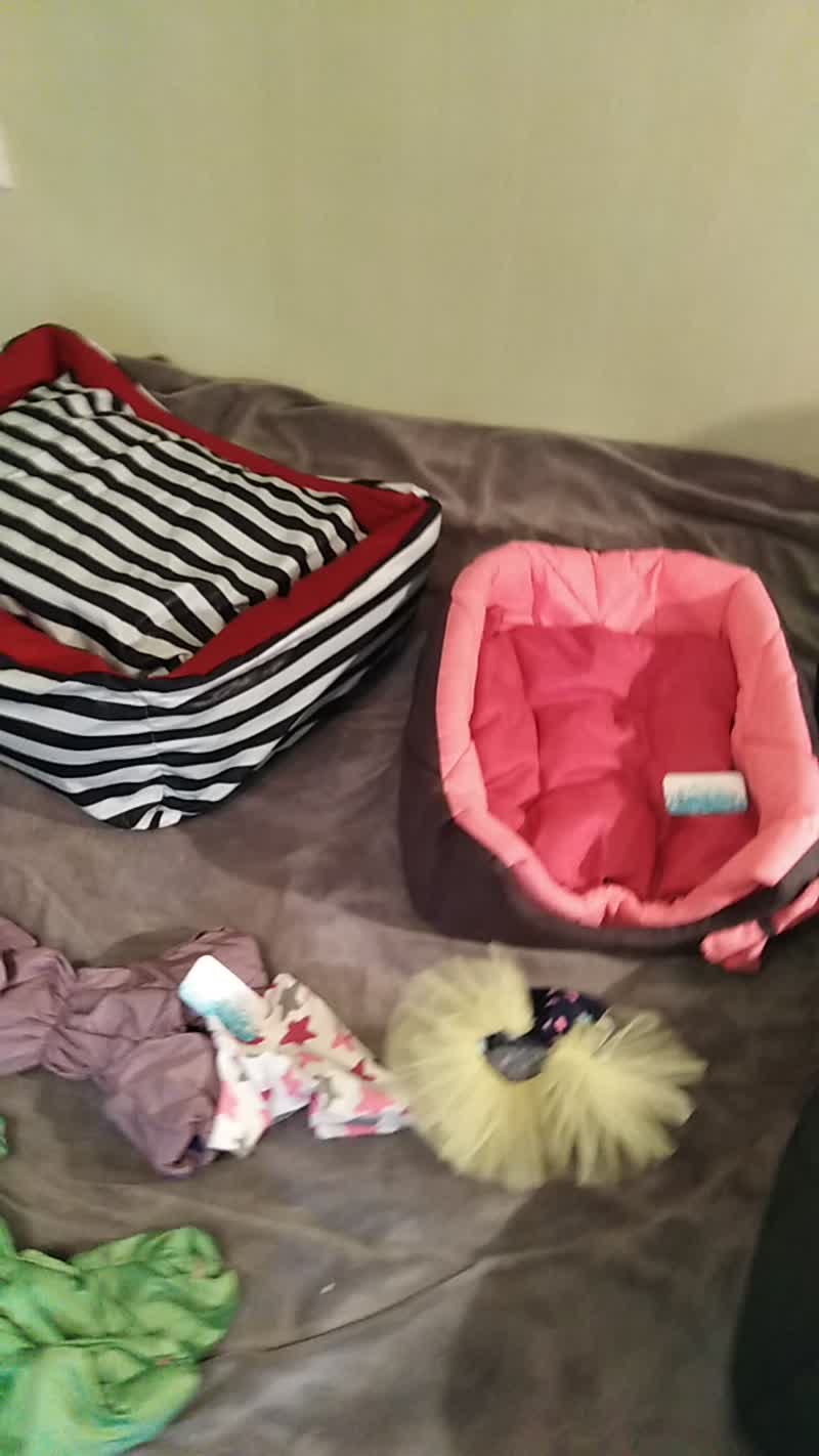Одежда для собак и лежаки.