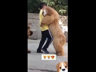Пригласил на танец! ))