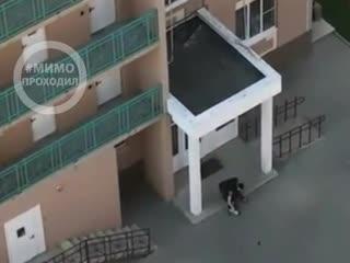 Муж избил жену во дворе жилого дома. Ростов-на-Дону
