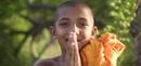 Sri Lanka Vibes
