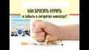 H 500 помог бросить курить Президент Coral Club Леонид Лапп